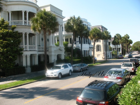 Charleston South Carolina (4)